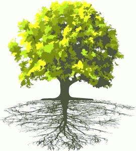 נוף העץ ושורשיו