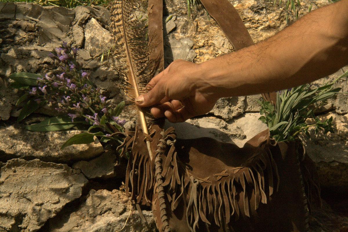 ליקוט צמחי מרפא: ידע קדום בשירות הרפואה