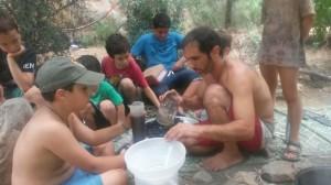 הכנת משחות לכוויות מצמחי המרפא של היער