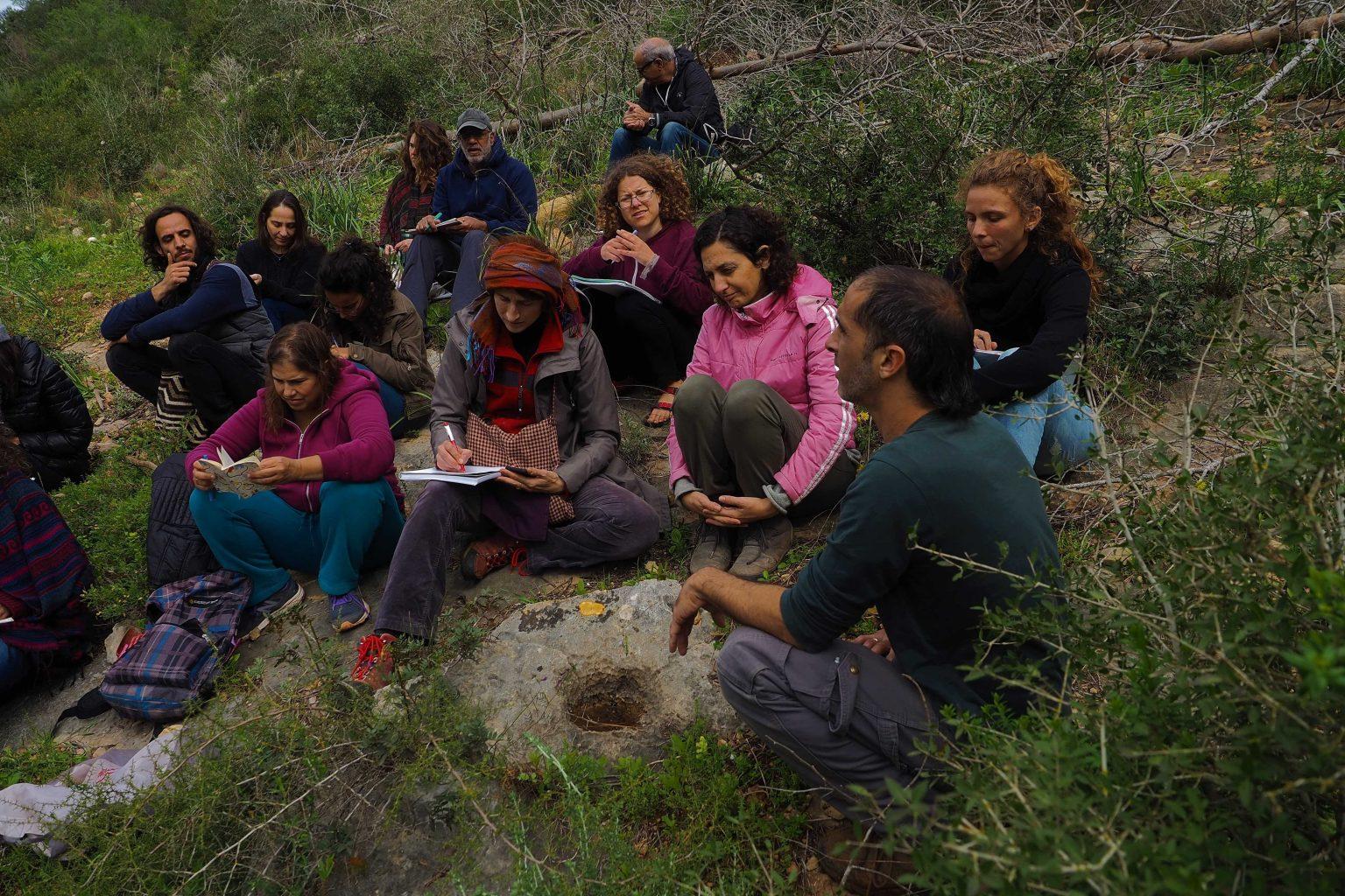 קורס שנתי ביער בן 12 מפגשים להכרת עשרות צמחי מרפא מקומיים ולחיבור אל תבונת היער והצמחים.